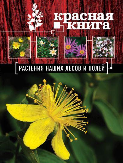 Красная книга. Растения наших лесов и полей - фото 1