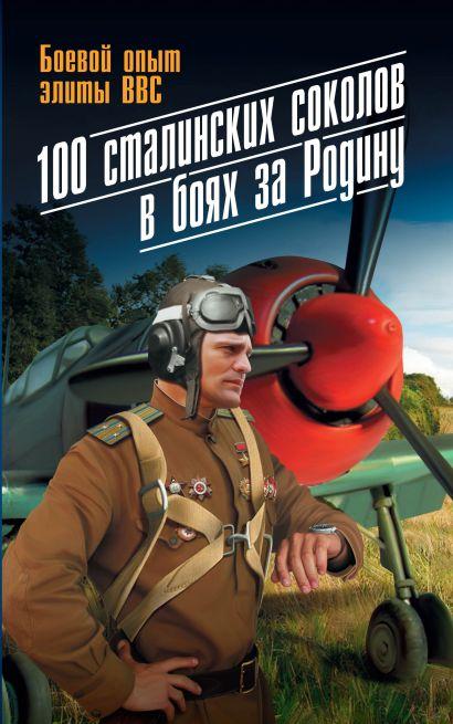 100 сталинских соколов в боях за Родину. Боевой опыт элиты ВВС - фото 1