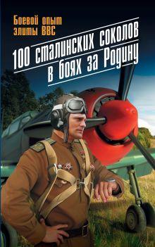 100 сталинских соколов в боях за Родину. Боевой опыт элиты ВВС