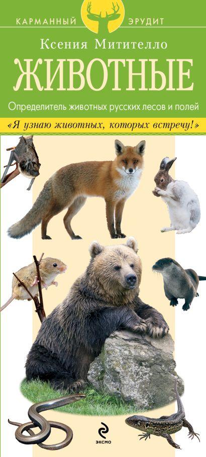Животные. Определитель животных русских лесов и полей - фото 1