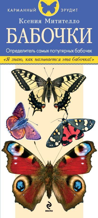 Бабочки. Определитель самых популярных бабочек - фото 1