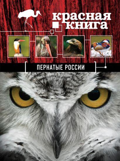 Красная книга. Пернатые России - фото 1