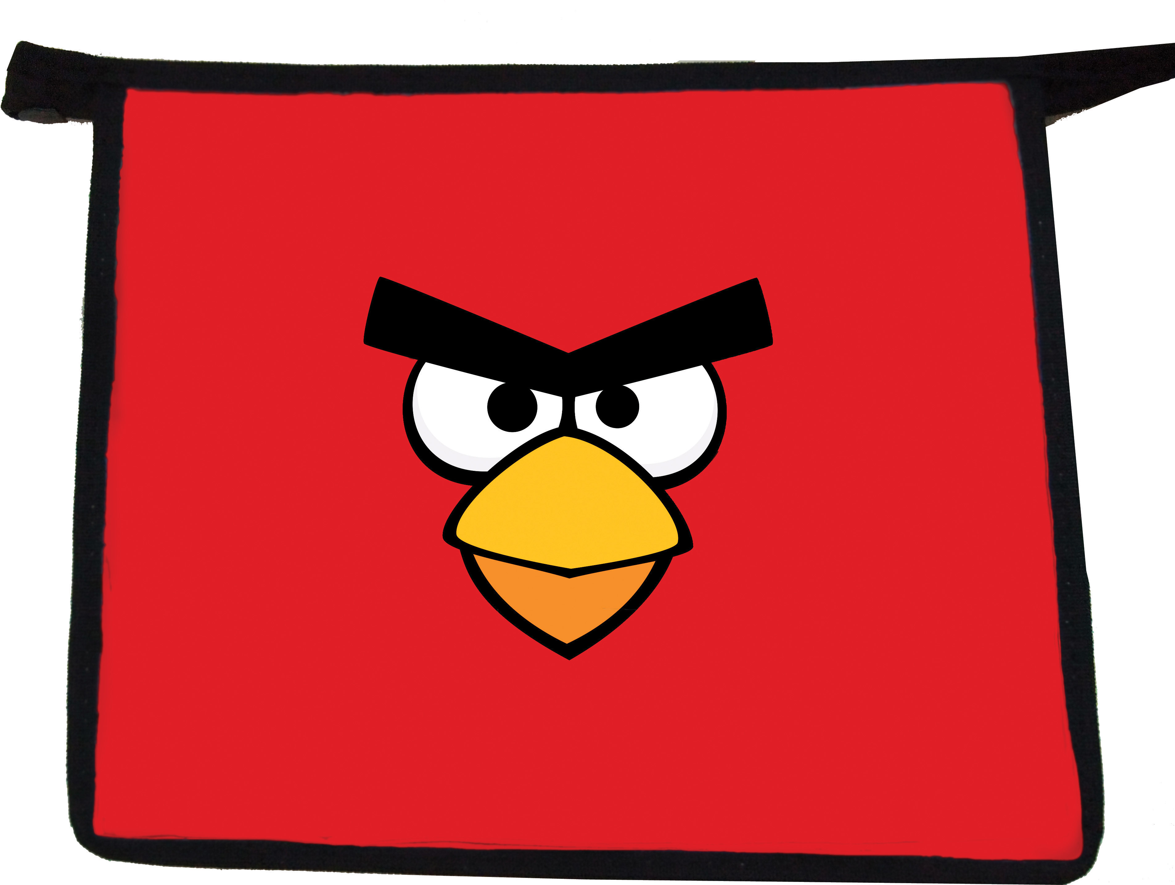 Папка- для тетрадей Angry birds ,формат  А4,пластик, на молнии