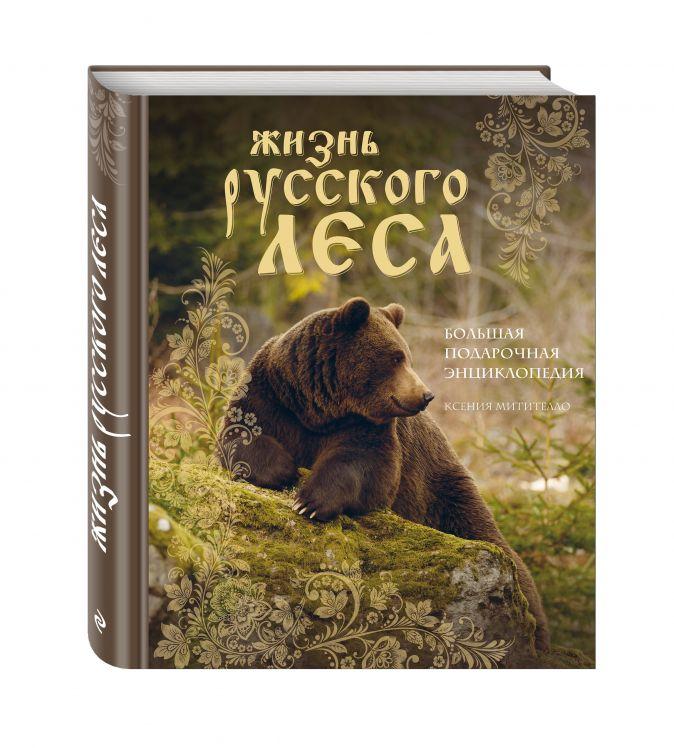 Жизнь русского леса. Большая подарочная энциклопедия (медведь) Ксения Митителло