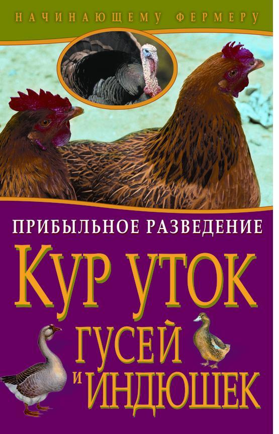 Прибыльное разведение кур, уток, гусей и индюшек
