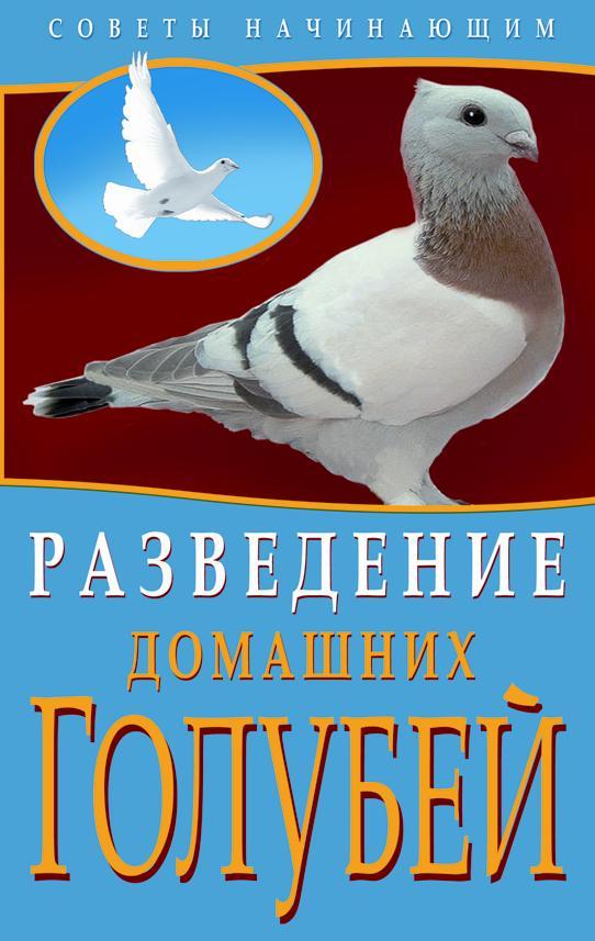 Разведение домашних голубей Каминская Е.