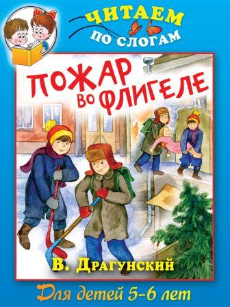 Драгунский В. - Пожар во флигеле, или Подвиг во льдах обложка книги