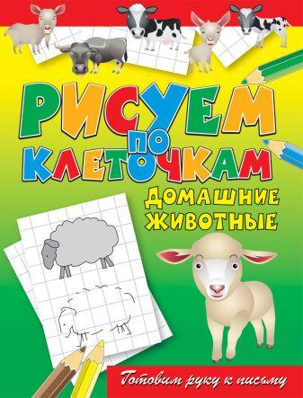 Зайцев В.Б. - Домашние животные обложка книги