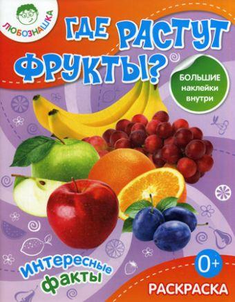 Где растут фрукты?Раскраска+большие наклейки внутри 0+