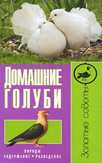 Каминская Е. - Домашние голуби. Породы,содержание,разведение обложка книги