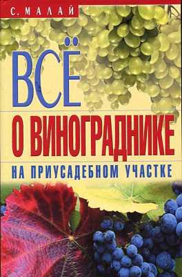 Все о винограднике на приусадебном участке Малай С.