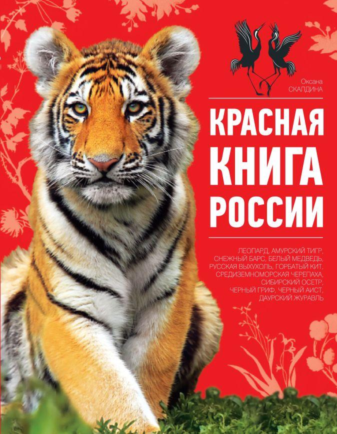 Оксана Скалдина - Красная книга России. 2-е издание обложка книги