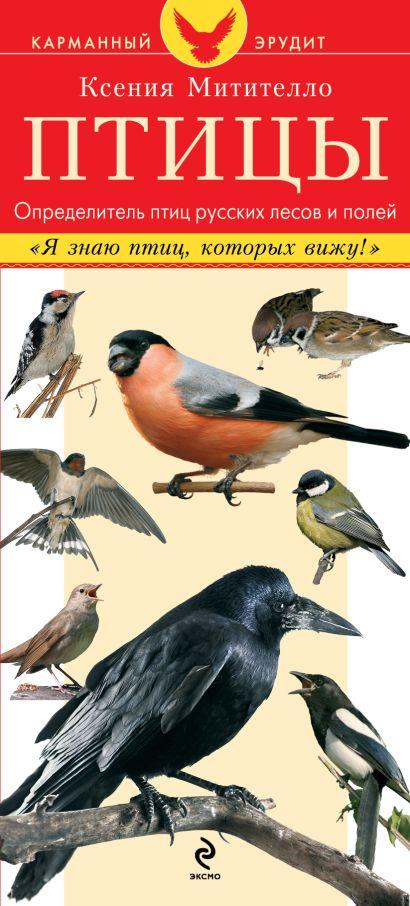 Птицы. Определитель птиц русских лесов и полей - фото 1