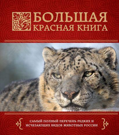 Большая красная книга - фото 1
