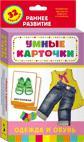 Одежда и обувь (Разв. карточки 0+)