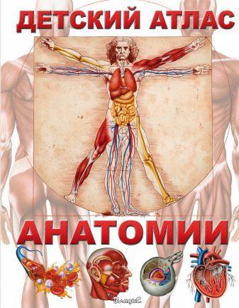 Гуиди В. - Детский атлас анатомии обложка книги