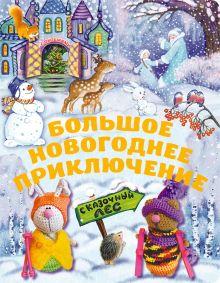 5+ Большое новогоднее приключение (с окошками) (н.оф.) + письмо Деду Морозу