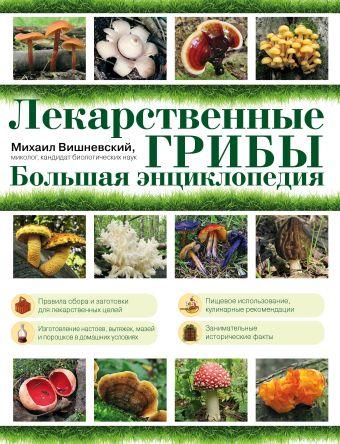 Лекарственные грибы. Большая энциклопедия Вишневский М.В.