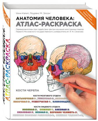 Лоуренс М. Элсон, Уинн Кэпит - Анатомия человека: атлас-раскраска обложка книги