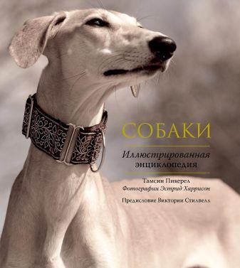 Тамсин Пикерел - Собаки. Иллюстрированная энциклопедия обложка книги