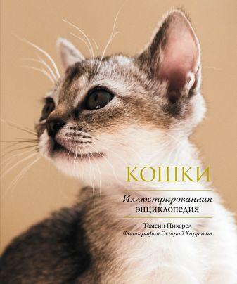 Тамсин Пикерел - Кошки. Иллюстрированная энциклопедия обложка книги