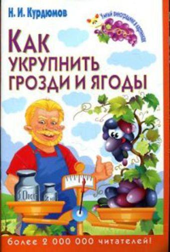 Как укрупнить грозди и ягоды Курдюмов Н.И.