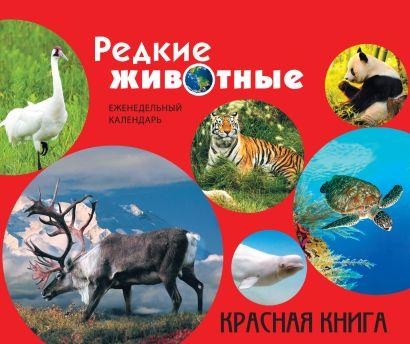 Редкие животные. Красная книга (серия Подарочные издания. Календари на 52 недели) - фото 1