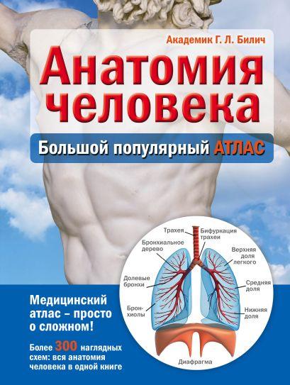 Анатомия человека: большой популярный атлас - фото 1