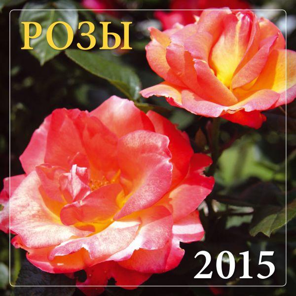 Розы 2015