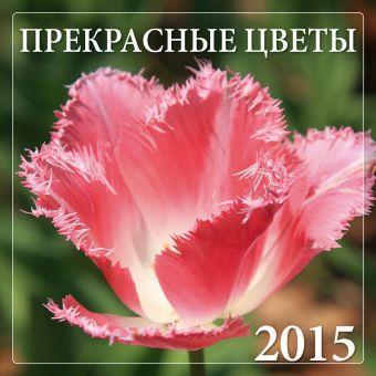 Прекрасные цветы 2015