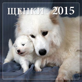 Щенки 2015