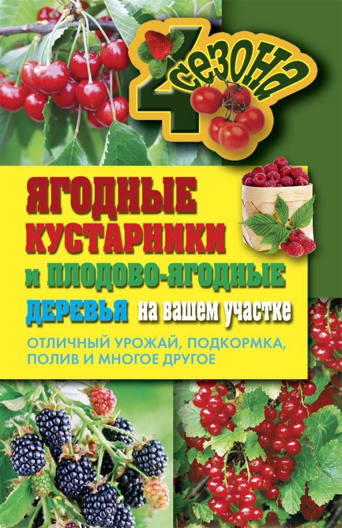 Николаева О.В. - Ягодные кустарники и плодово-ягодные  деревья на вашем участке. Отличный урожай обложка книги