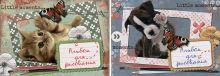 Альб д.рис 40л Клей А4 7123/2-EAC Щенок и котенок с бабочками