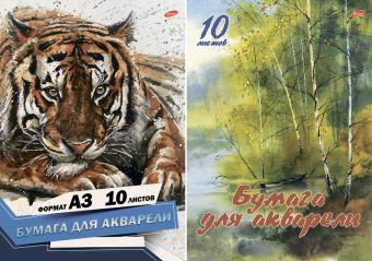 Бум д/акв 10л Папка А3 7154/2-EAC Пейзаж с березами, Тигр