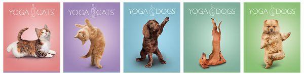 Тетр 40л скр А5 лин YD15/5-EAC твин УФ Yoga Dogs