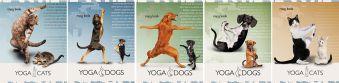 Тетр 60л скр А5 кл YD34/5-EAC выб УФ Yoga Dogs