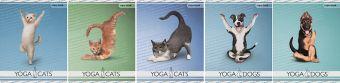 Тетр 48л скр А5 лин YD45/5-ЕАС полн УФ Yoga Dogs