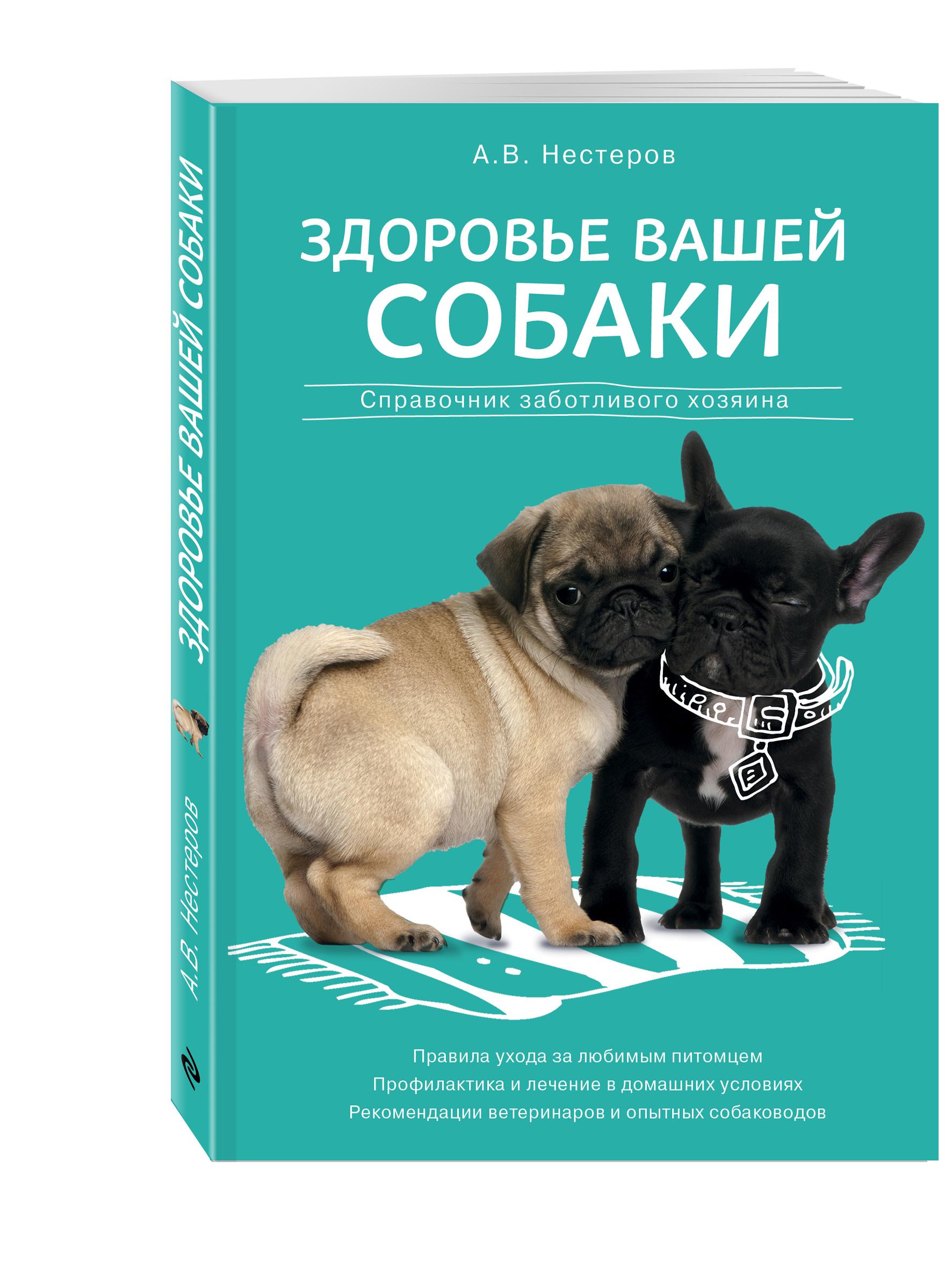 уход и лечение Нестеров А.В. Здоровье вашей собаки