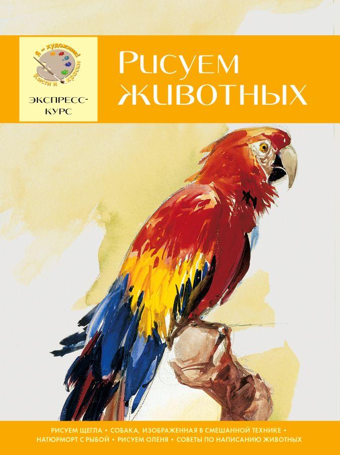 Головенко И. - Рисуем животных. Экспресс - курс для начинающих обложка книги