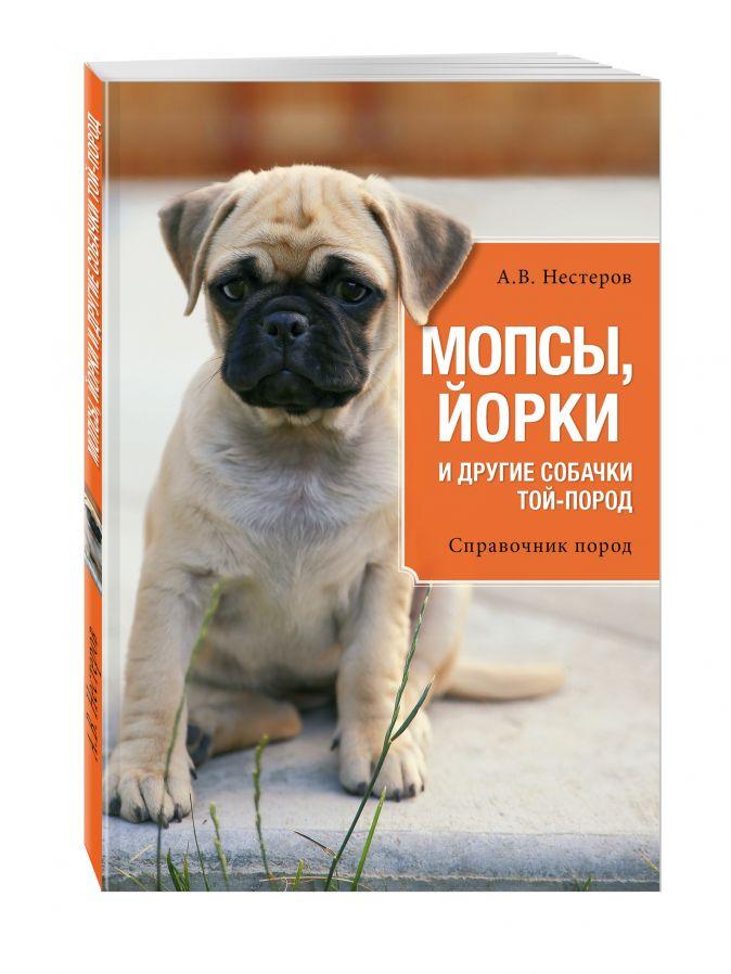 А.В. Нестеров - Мопсы, йорки и другие собачки той-пород обложка книги
