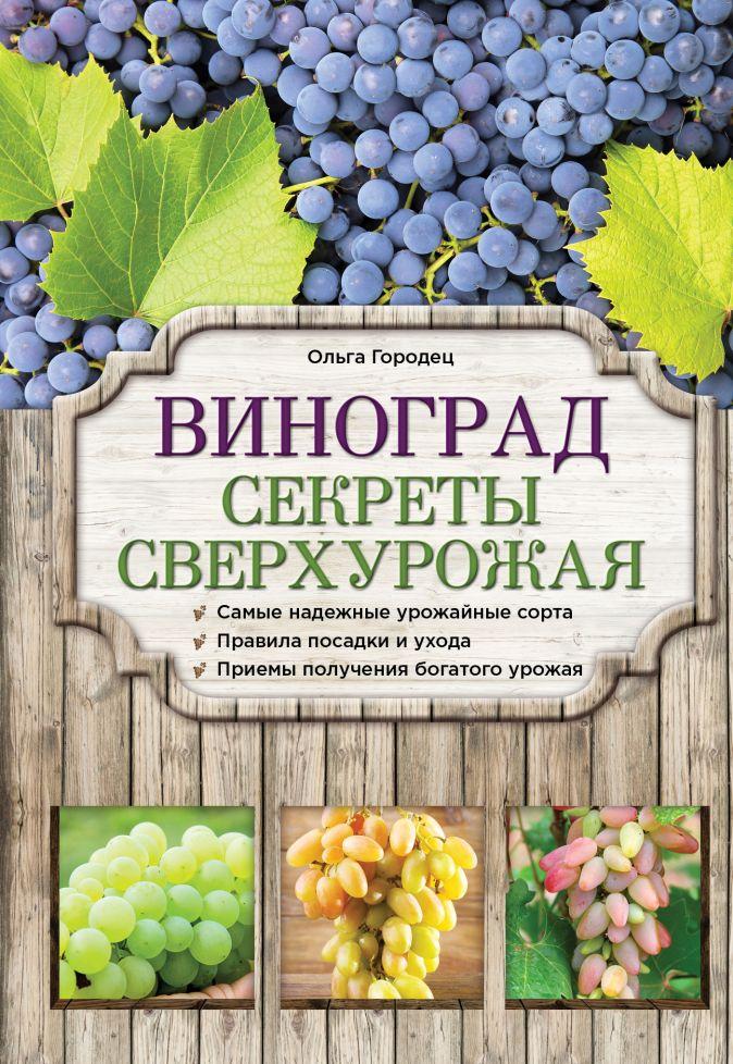 Ольга Городец - Виноград. Секреты сверхурожая обложка книги