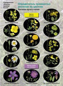 Биология. 6-11классы. Определитель травянистых растений по цветкам. Растения лугов и полей..Буклет.