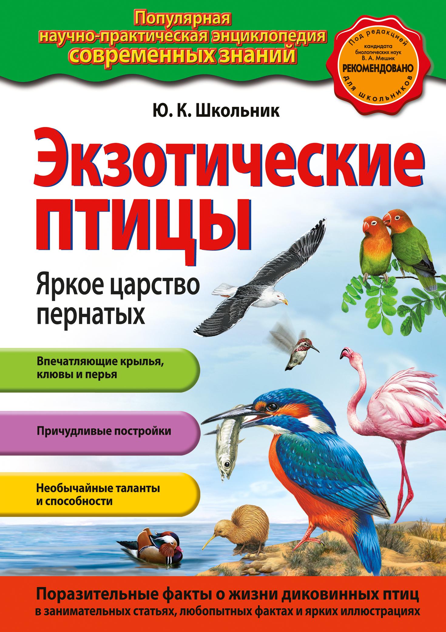 Экзотические птицы. Яркое царство пернатых