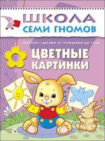 ШСГ Первый год обучения. Цветные картинки. Дарья Денисова