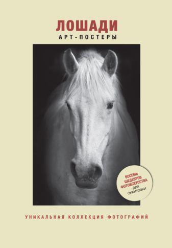 Лошади.Уникальная коллекция фотографий