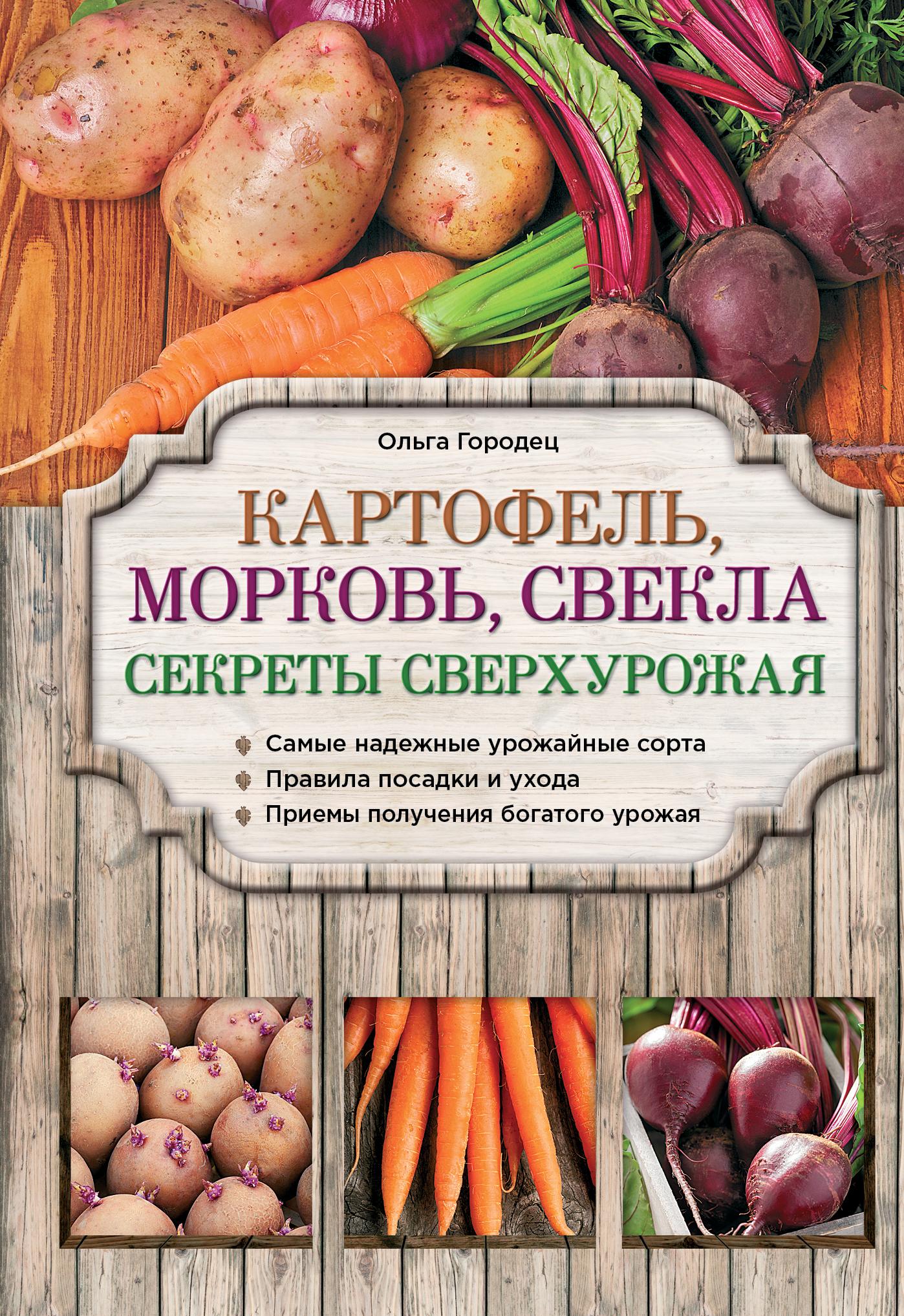 Городец О.В. Картофель, морковь, свекла. Секреты сверхурожая анна белякова картофель морковь свекла