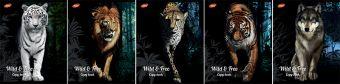 Тетр 80л скр А5 кл 7167/5-ЕАС полн УФ Животные: Wild & Free