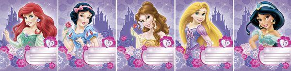 Тетр 12л скр А5 кл карт D3365/5-ЕАС глит Princess
