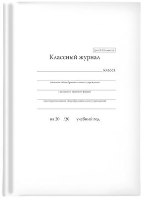 Классный журнал 10-11 кл.
