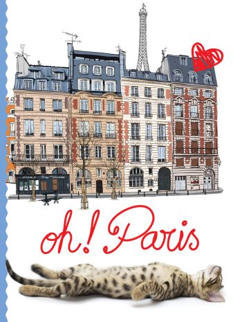 Кот в Париже